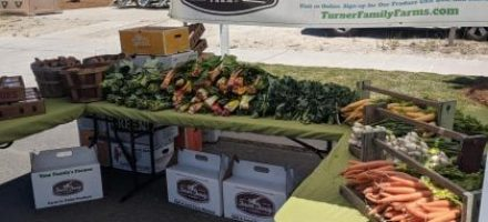 CSA Members' Post for the May20-21, 2021 Delivered Box