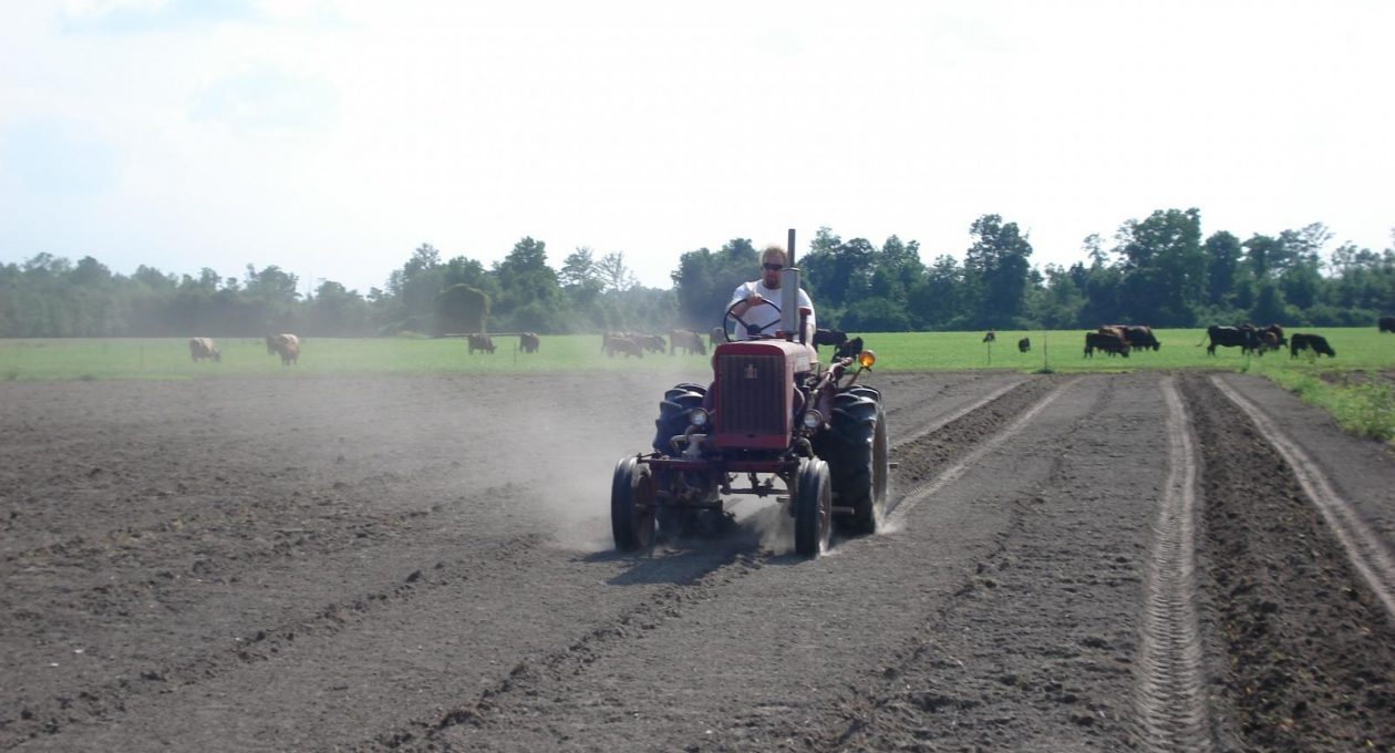 Blast from the past. Video from last year. International 140 hilling rows